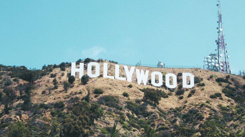 Five A-List Celebrities You Never Knew Were Vegan
